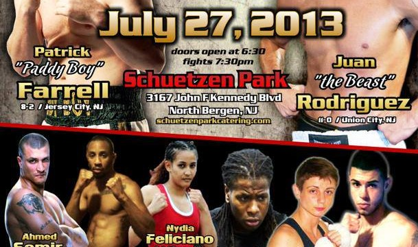 Fight Night at the Park 2