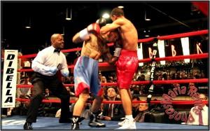 fight 7