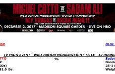 Bout Sheet: Miguel Cotto vs Sadam Ali