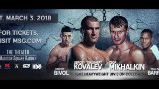 Kovalev-Mikhalkin banner