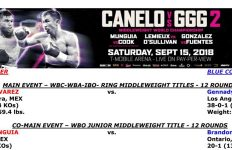 Bout Sheet: Alvarez vs Golovkin