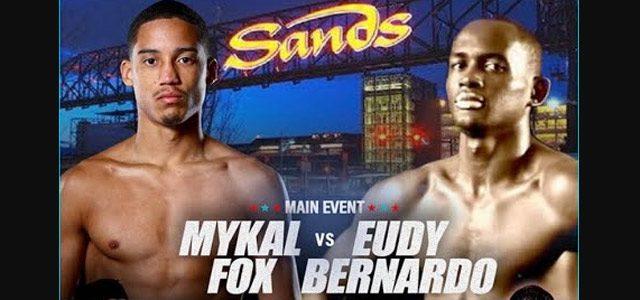 Fox - Bernardo banner